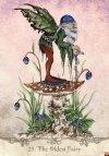 Fairy Wisdom Oracle Deck