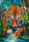 Puzzle 1000 Trefl 10528 Tygrys