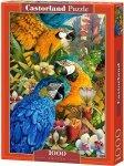 Puzzle 1000 Castorland C-103485 Papugi - Amazon