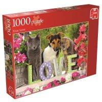 Puzzle 1000 Jumbo 17043 Pies i Kot