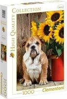 Puzzle 1000 Clementoni 39365 Pies - Bulldog