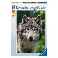 Puzzle 500 Ravensburger 143542 Wilk