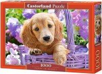 Puzzle 1000 Castorland C-103799 Pies w Koszyku
