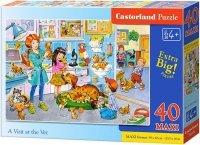 Puzzle 40 Maxi Castorland B-040186 Wizyta u Weterynarza
