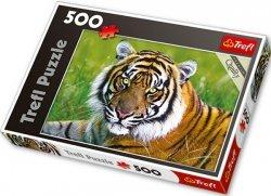 Puzzle 500 Trefl 37192 Tygrys