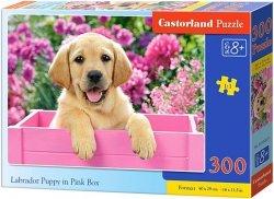 Puzzle 300 Castorland B-030071 Piesek - Labrador Puppy in Pink Box