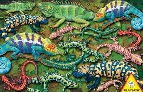 Puzzle 1000 Piatnik P-5553 Salamandry