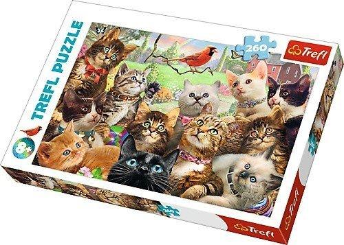 Puzzle 260 Trefl 13241 Portert Kotów