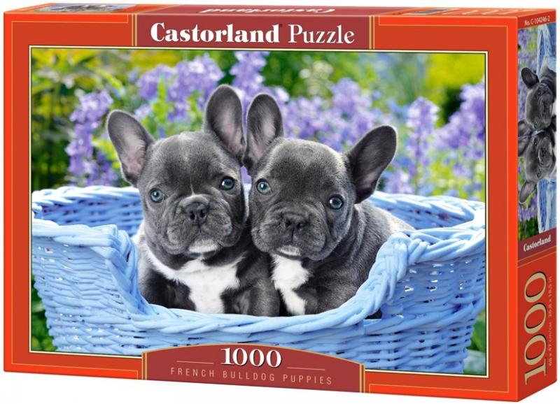 Puzzle 1000 Castorland 104246 Szczenięta Buldoga Francuskiego