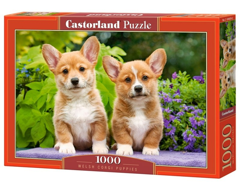 Puzzle 1000 Castorland C-104659 Psy - Szczenięta Welsh Corgi