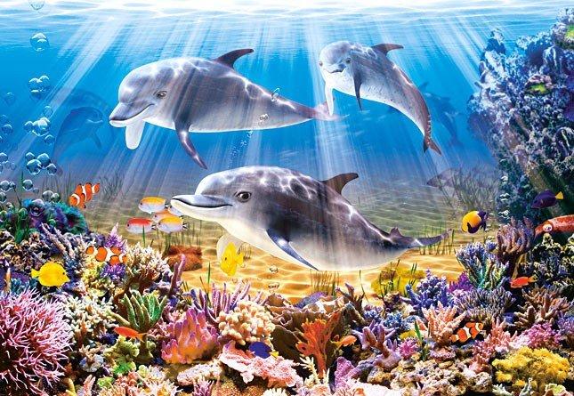 Puzzle 500 Castorland B-52547 Dolphins Underwater