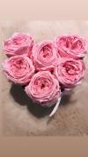 Nowość! Rózowe,angielskie, wieczne róze w mini boxe heart