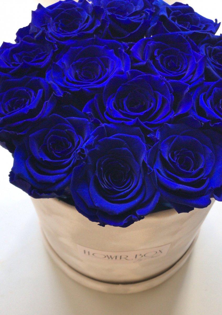 80e4fa2719118f Niebieskie żywe WIECZNE róże w średnim białym velvet boxie