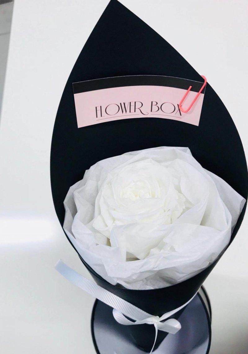 Pojedyńcza wieczna róża