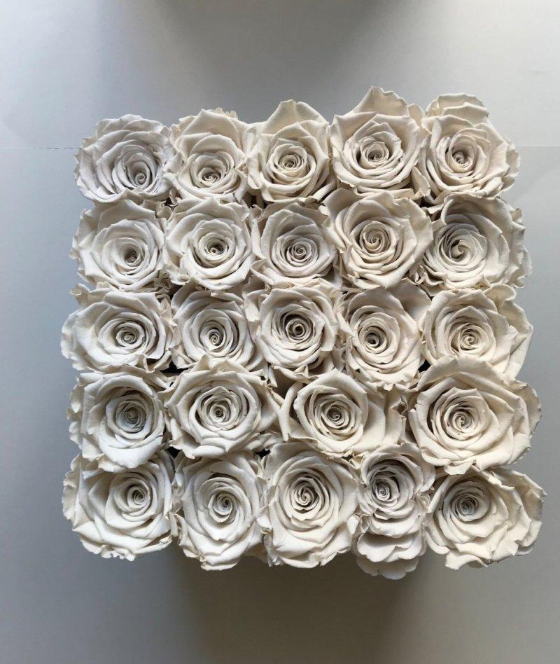 Kremowe żywe WIECZNE róże w kwadratowym białym boxie