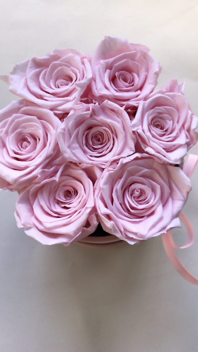 Pudrowo rózowe żywe WIECZNE róże w małym różowym velvet boxie XS