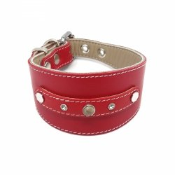 Leather collar PRESTIGE for greyhounds