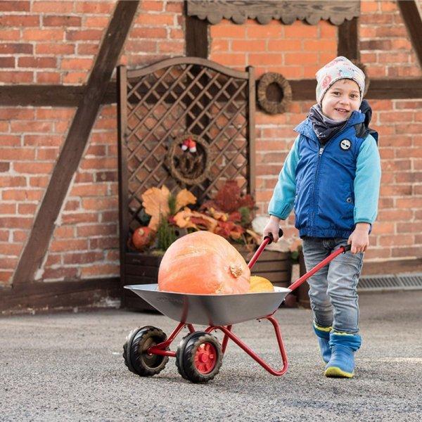 Taczka dla dzieci ogrodowa Rolly Toys Dwukołowa Metalowa