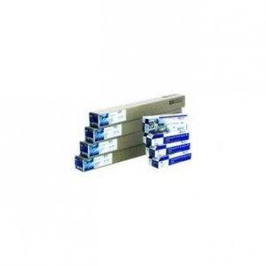 Papier do plotera HP 610/22.9/Clear Film. 610mmx22.9m. 24. C3876A. 174 g/m2. papier. przezroczysta. do drukarek atramentowych. rolka C3876A
