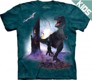 Koszulka dziecięca THE MOUNTAIN REX 15-1416