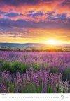 Kalendarz ścienny wieloplanszowy Nature Emotions 2021 - wrzesień 2021