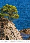 Kalendarz ścienny wieloplanszowy Trees 2021 - maj 2021