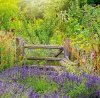 Kalendarz ścienny wieloplanszowy Gardens 2022 z naklejkami - lipiec 2022