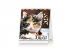 Kalendarz biurkowy 2020 Kotki (Kittens)
