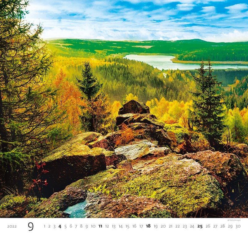 Kalendarz ścienny wieloplanszowy Forest 2022 - wrzesień 2022