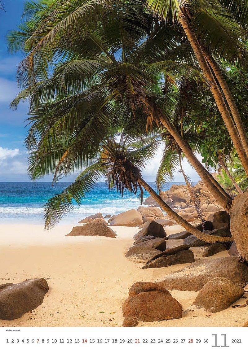 Kalendarz ścienny wieloplanszowy Tropical Beaches 2021 - listopad 2021