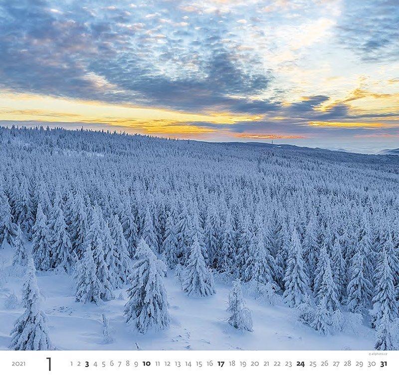 Kalendarz ścienny wieloplanszowy Forest 2021 - styczeń 2021