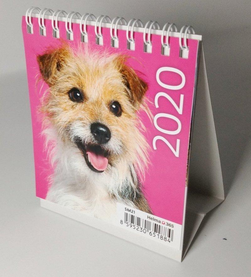 Kalendarz biurkowy mini Pieski 2020 - okładka