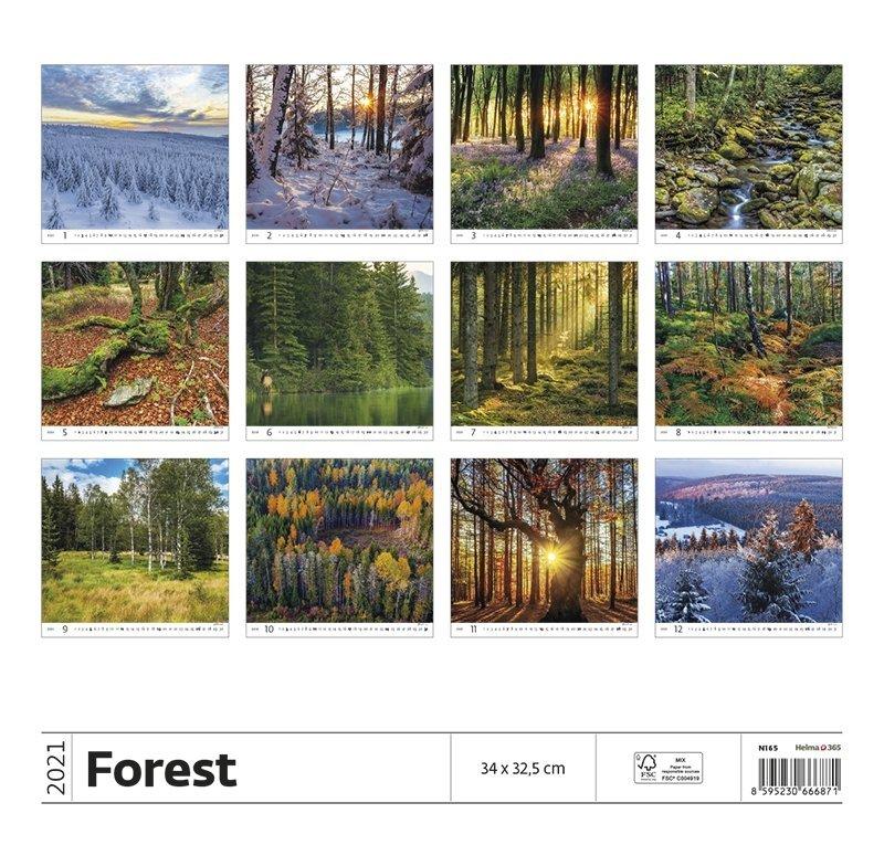 Kalendarz ścienny wieloplanszowy Forest 2021 - tylna okładka