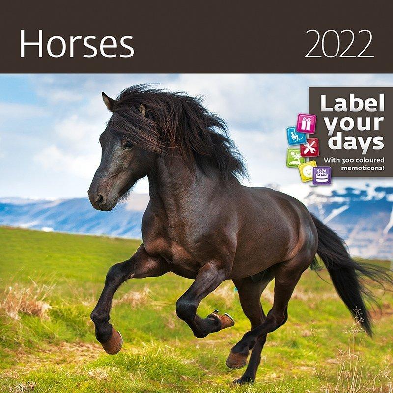 Kalendarz ścienny wieloplanszowy Horses 2022 z naklejkami - okładka