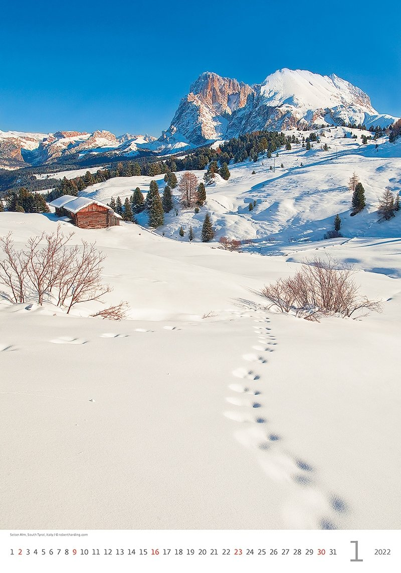 Kalendarz ścienny wieloplanszowy Alps 2022 - styczeń 2022