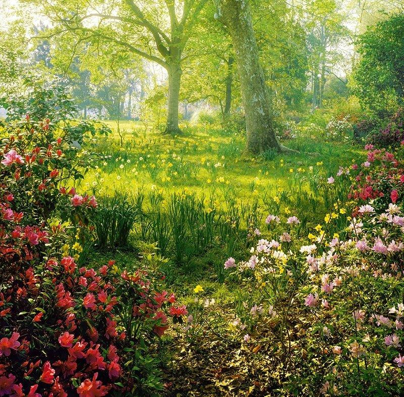 Kalendarz ścienny wieloplanszowy Gardens 2022 z naklejkami - marzec 2022