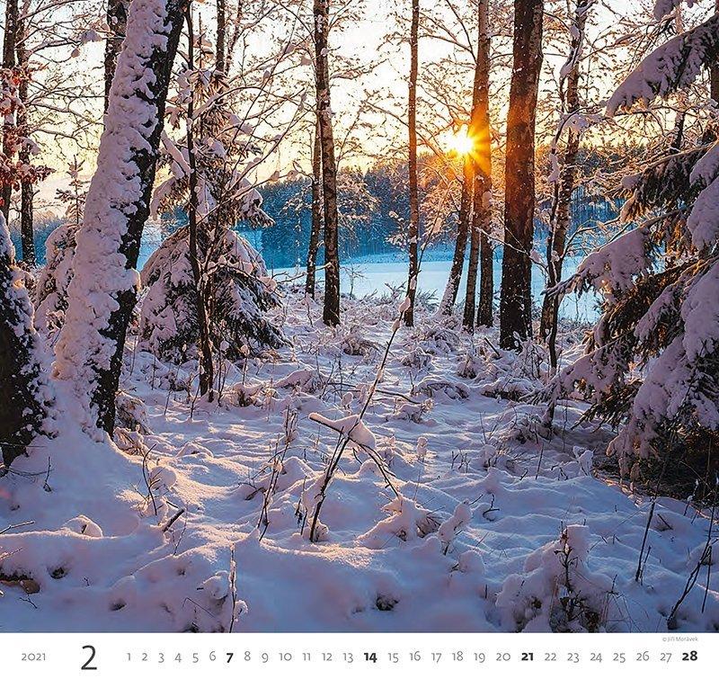 Kalendarz ścienny wieloplanszowy Forest 2021 - luty 2021