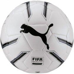 Piłka nożna Puma Elite 2.2 Fusion 082814 01