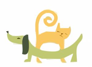 Coś pysznego dla psa i kota