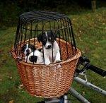 Trixie 2806 Kosz Wiklinowy do roweru 44x48x33cm