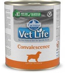 Vet Life Dog 2789 Natural Diet 300g Convalescence