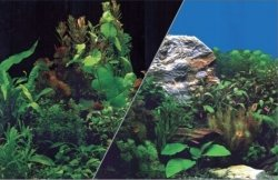 ZOLUX 354865 Tło akw. 40x60cm rośliny czarne/rośli