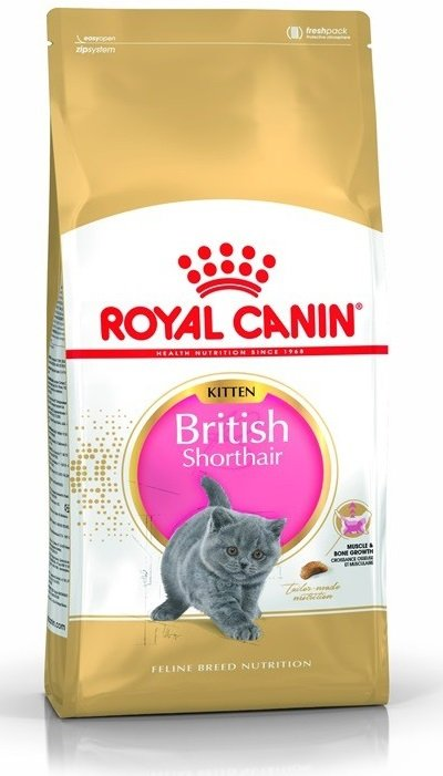Royal 251950 British Shorthair Kitten 400g
