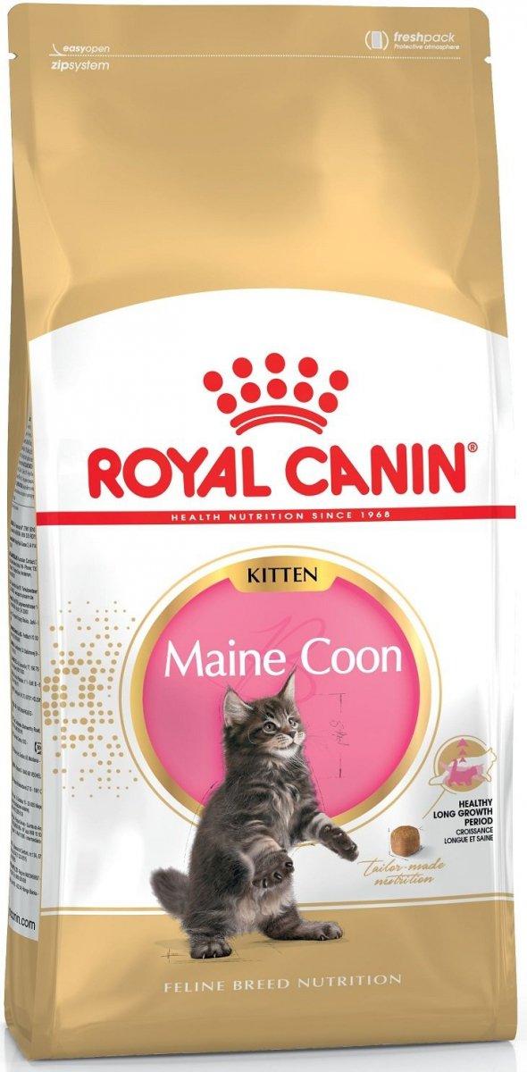 Royal 252110 Maine Coon Kitten 10kg