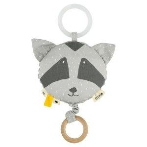 Mr. Raccoon pozytywka