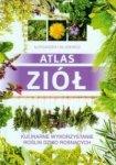 Atlas ziół Kulinarne wykorzystanie roślin dziko rosnących Aleksandra Halarewicz