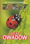 Atlas owadów 250 polskich gatunków Jacek Twardowski Kamila Twardowska
