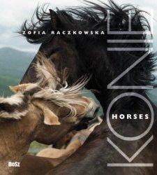Konie / horses Zofia Raczkowska