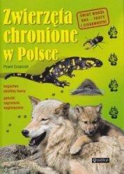 Zwierzęta chronione w Polsce Paweł Czapczyk