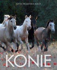Konie Edyta Trojańska-Koch
